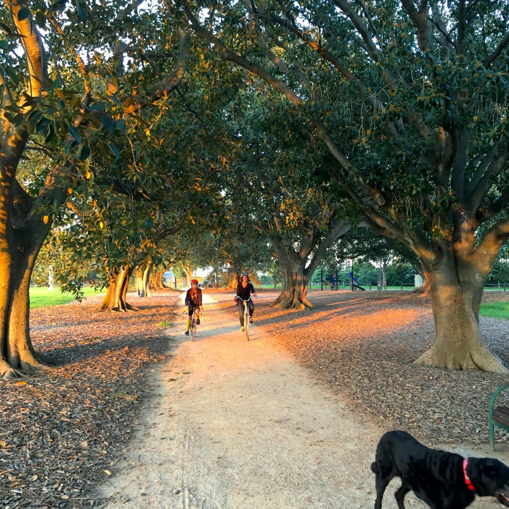 A Mindful Autumn afternoon in pictures